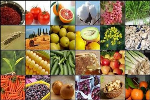 العراق يمنع استيراد 17 محصولا زراعيا من ايران