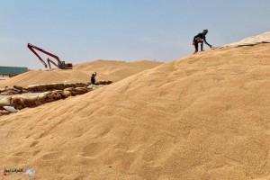 العراق يدعو السعودية إلى إنشاء معامل لصناعة المرشات الزراعية