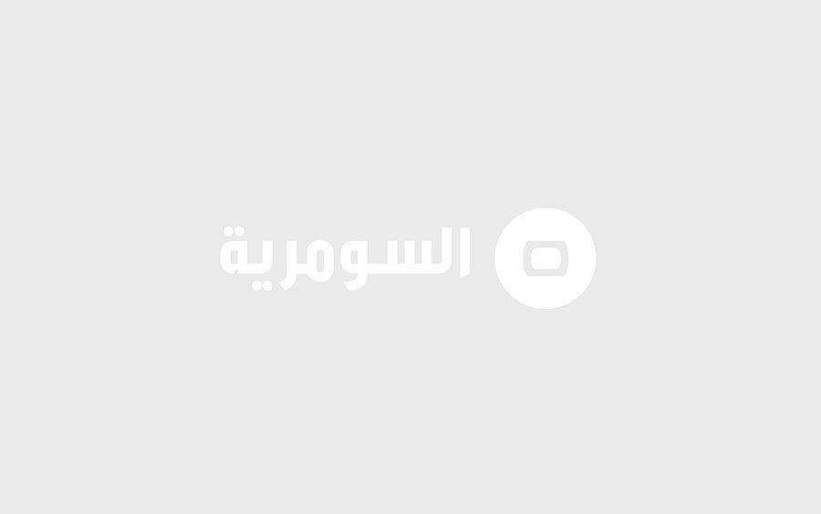 الاردن: 32 شاحنة بضائع أردنية دخلت العراق بشهرين فقط
