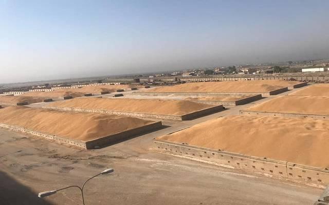 التجارة العراقية: شراء أكثر من 2.5 مليون طن حنطة محلية