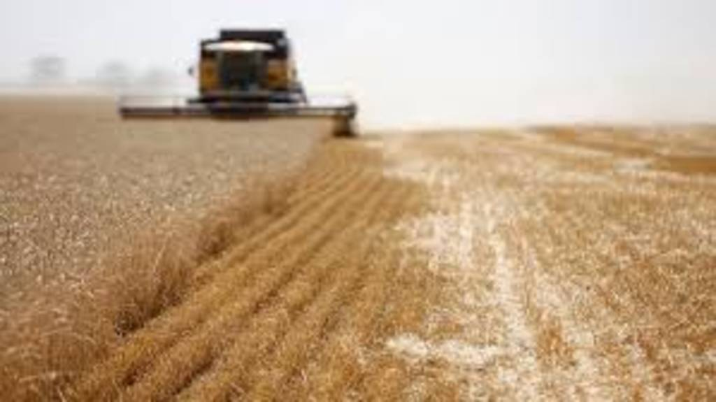 Iran seeks to import 100 thousand tons of Russian wheat for export to Iraq